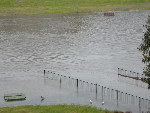 Paramatta River flood