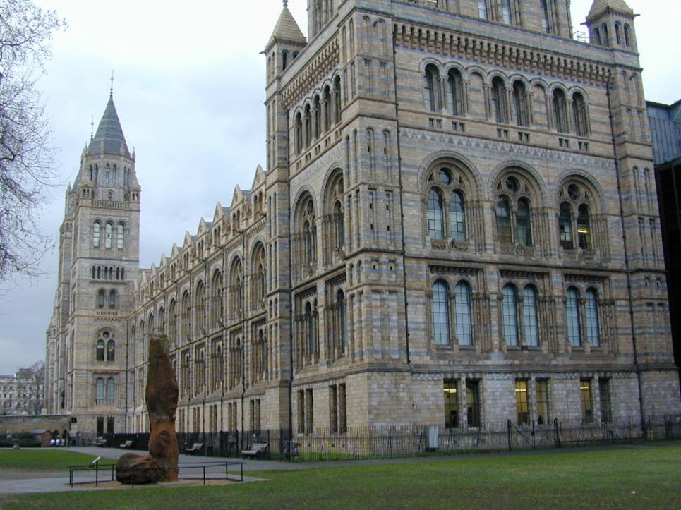NHM South Kensington